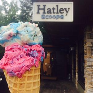 Hatley Scoops