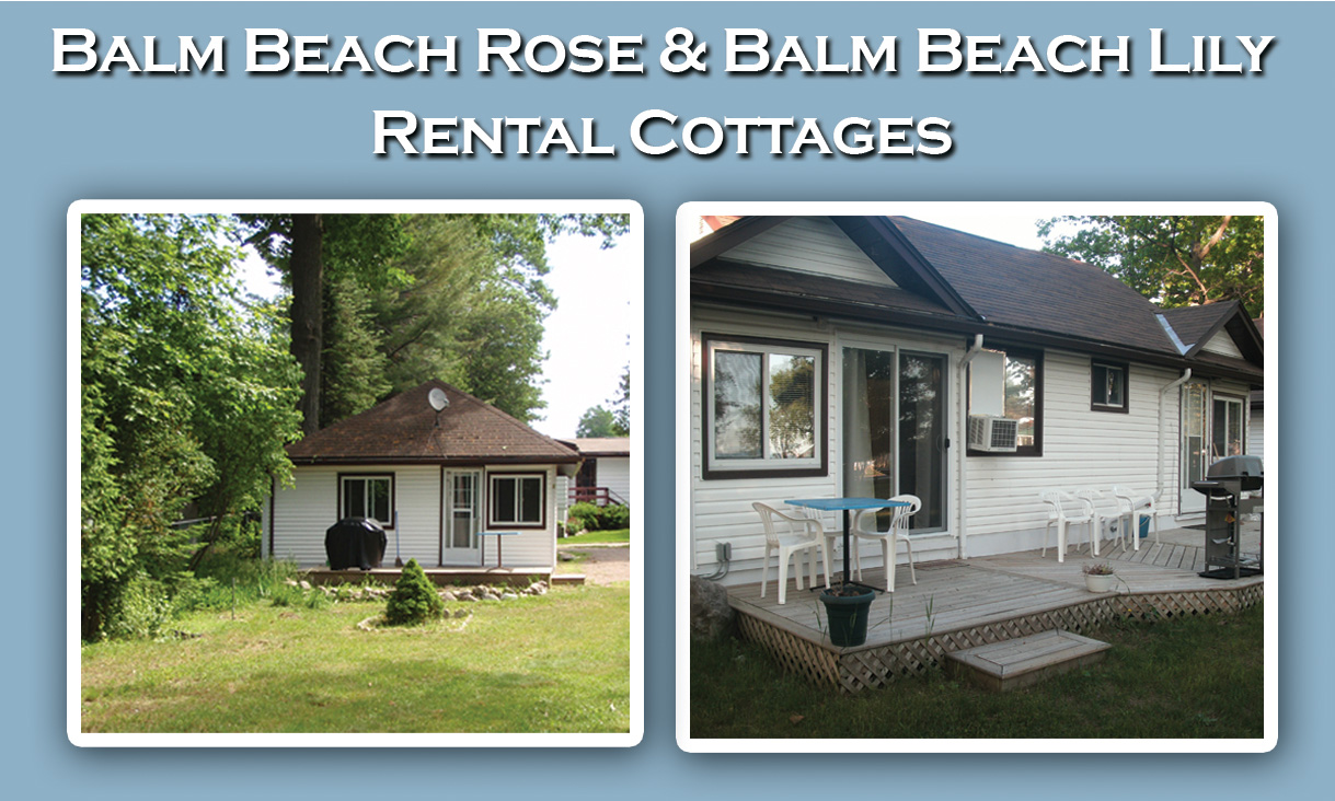 Balm Beach Lily & Rose Cottage Rentals