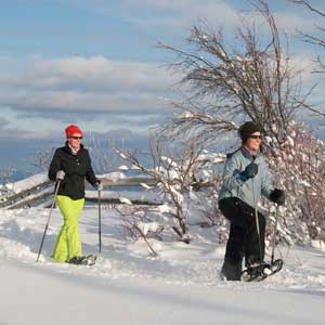 Snowshoe - Seasonal